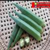 เมล็ดพันธุ์ กระเจี๊ยบเขียว ชาล ตรา พัลซาร์ บรรจุ 100 กรัม / กระป๋อง 2