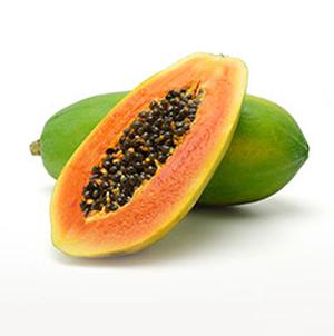 เมล็ดพันธุ์มะละกอ
